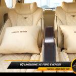 mau-do-ghe-limousine-ford-everest-dep-h21
